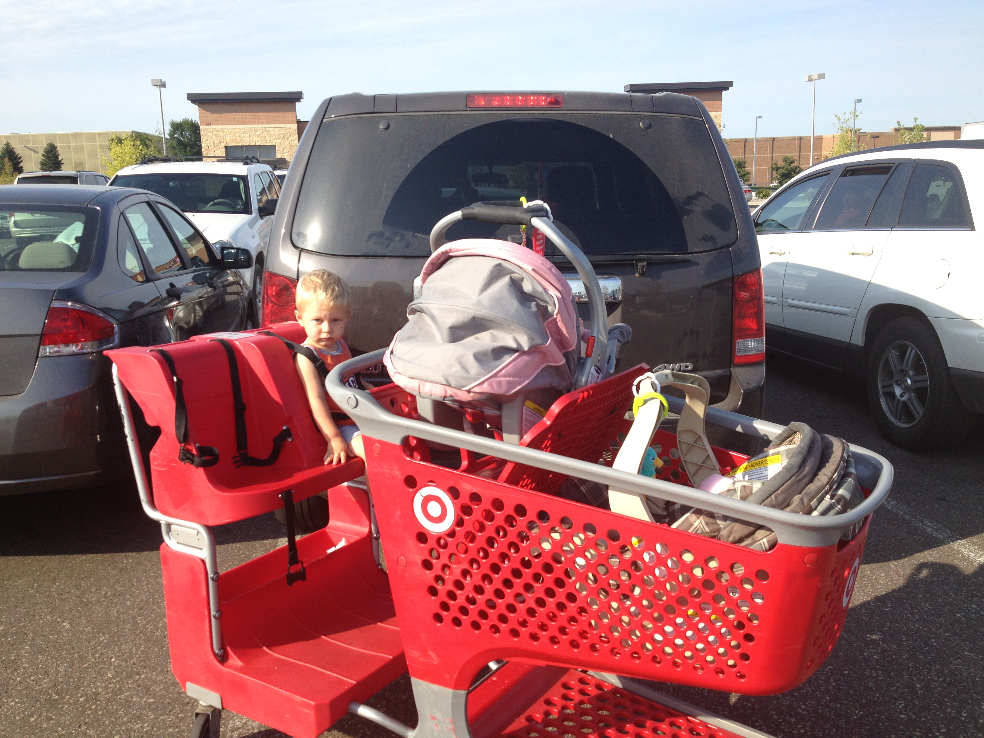 Target Cart Loaded